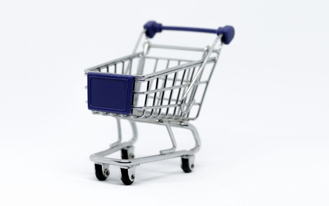 Be a Savvy College Shopper; Borrow Less!